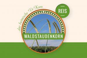 Waldstaudenkorn REIS online kaufen